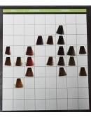 SCENIC COLORAZIONE SENZA AMMONIACA     ML. 100