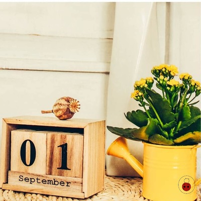 ~ Hello September ~ Please be #soft and #kind . ➡️ #seguilacoccinella . #ormar #torino #beauty #style #fashion #makeup #skin #hair #shopping #barber #barberlife #hairlovers #haircolor #hairlover #haircolorist #september #autumn #colors #restart #yourself